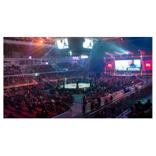 MMA Arena 8m in diameter with circle fighting zone on the podium 10m