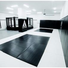 MMA cage (diameter 6m, podium height 0.5 m)
