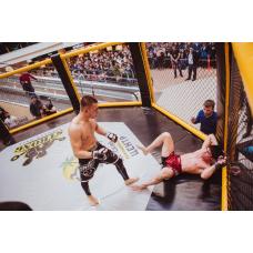 MMA cage (diameter 7m, on large podium, diameter 9m)