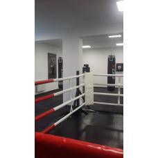Ринг напольный быстросборный 4 х 4 м.