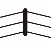 Boxing Ring Fence (2)